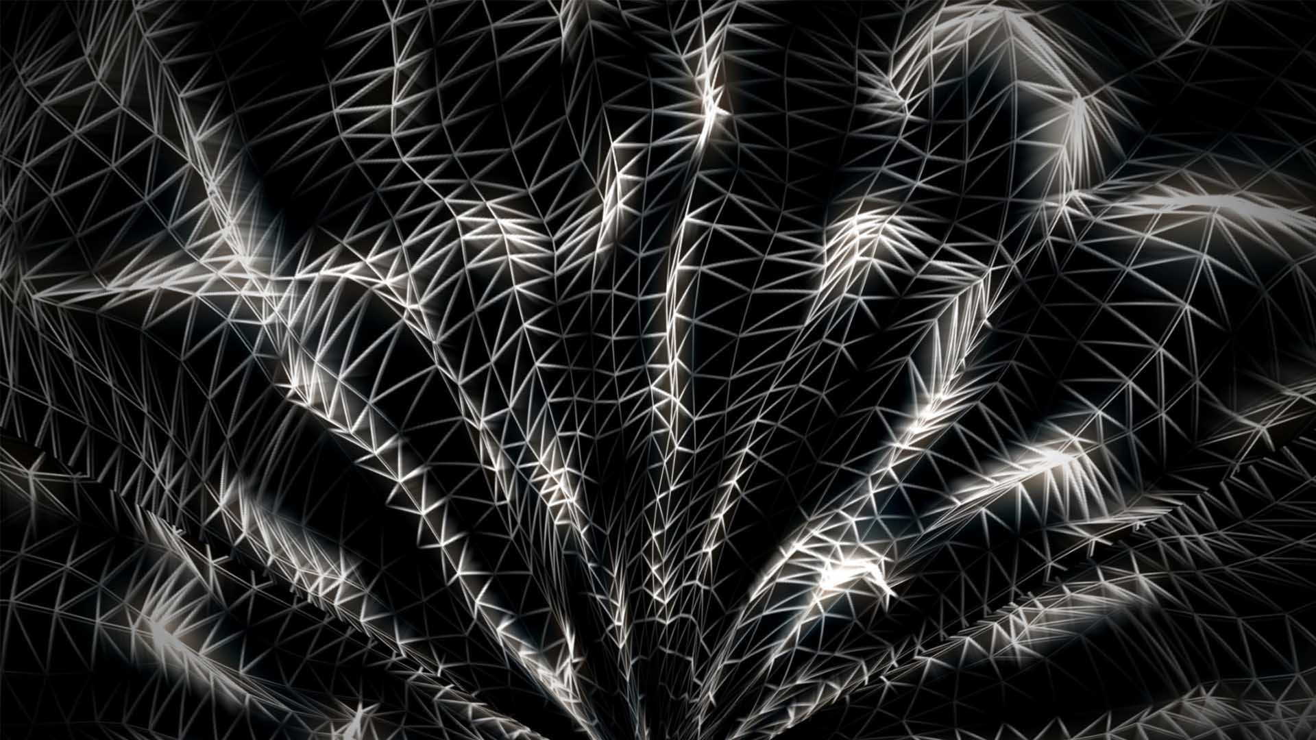 Wireframe_Background_Video_mapping_loop