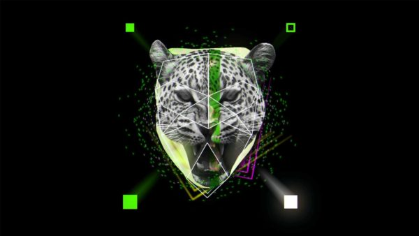 Main_Element_Head_Face_Animation_Motion_Graphics_Vj_Loop_HD_Layer_214