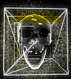 Skull video loop