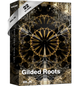 Gilded roots video loops abstract