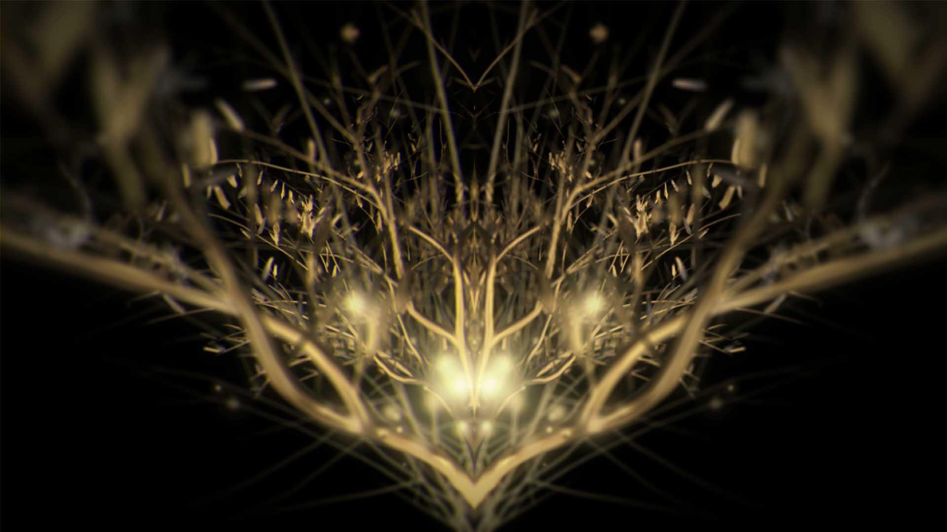 golden tree abstract vj loop video background wallpaper