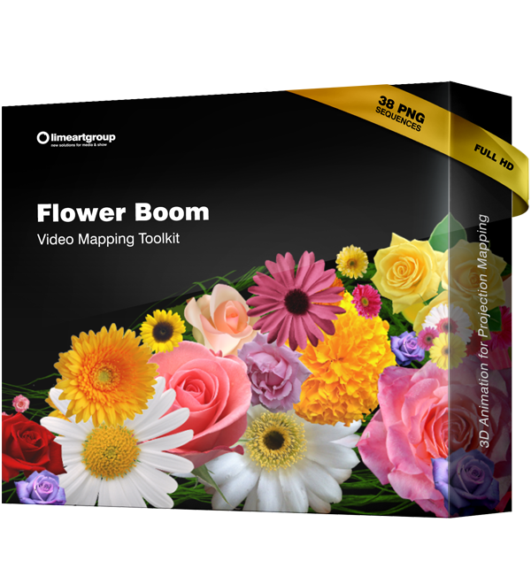 Flower Boom Video Mapping
