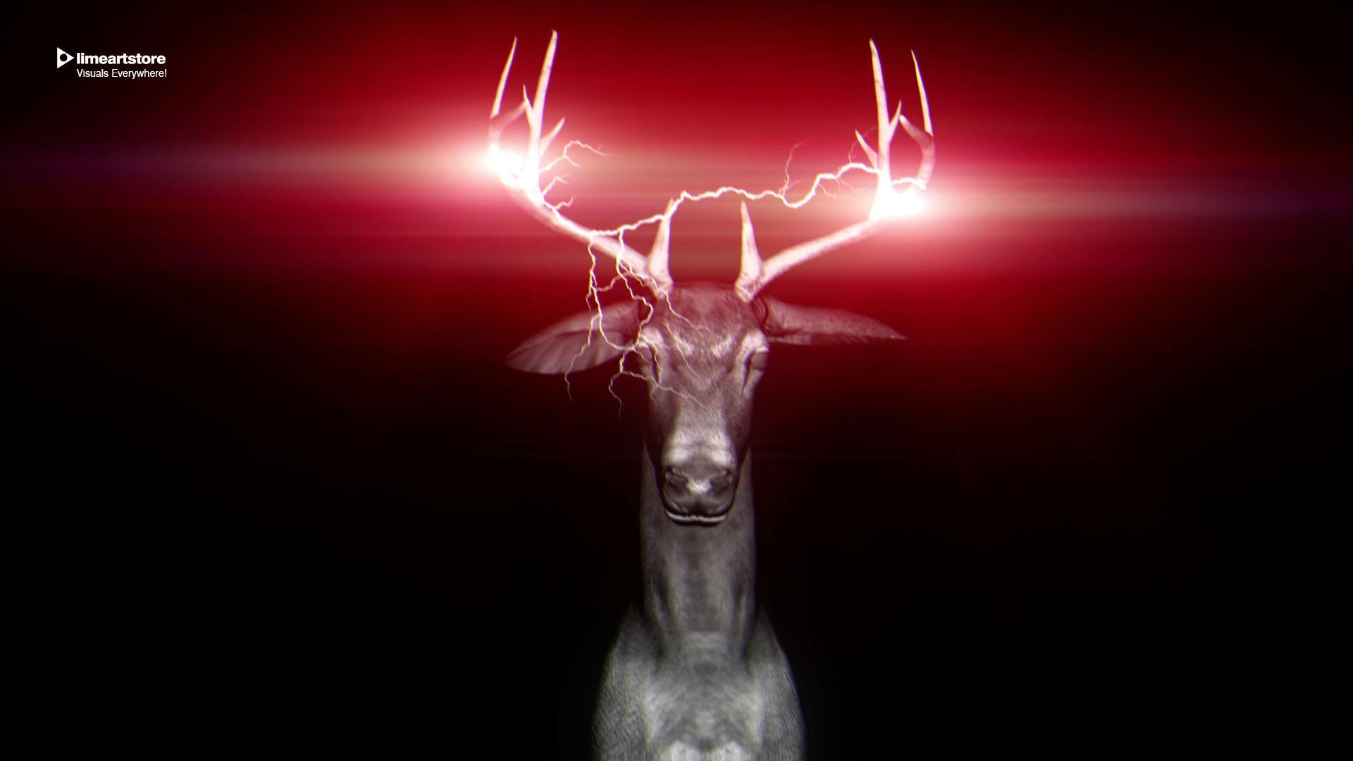 deer Neon vj loop deer