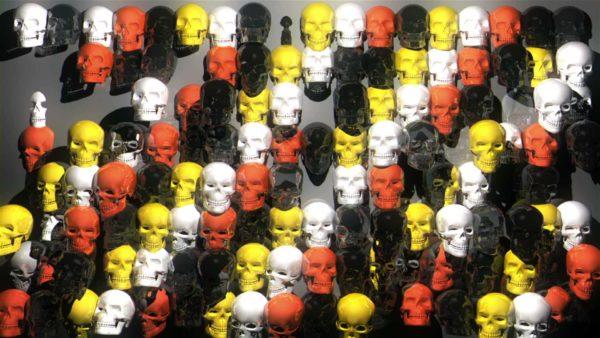 skull motion background