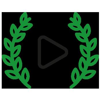 video art limeart