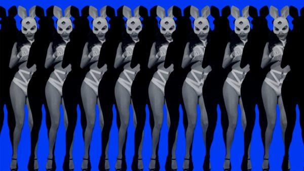 bunny girl video loop
