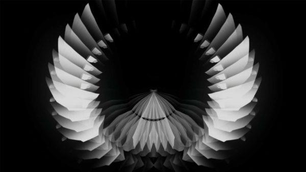 circle geometric white background video loop