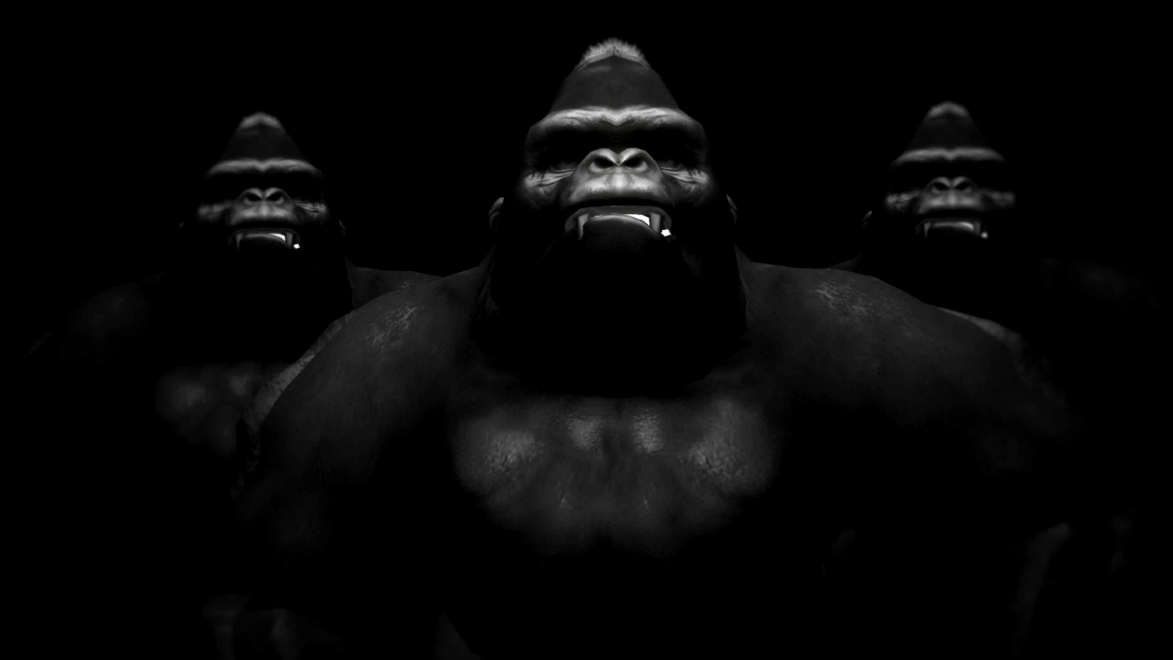 gorilla 3D animation