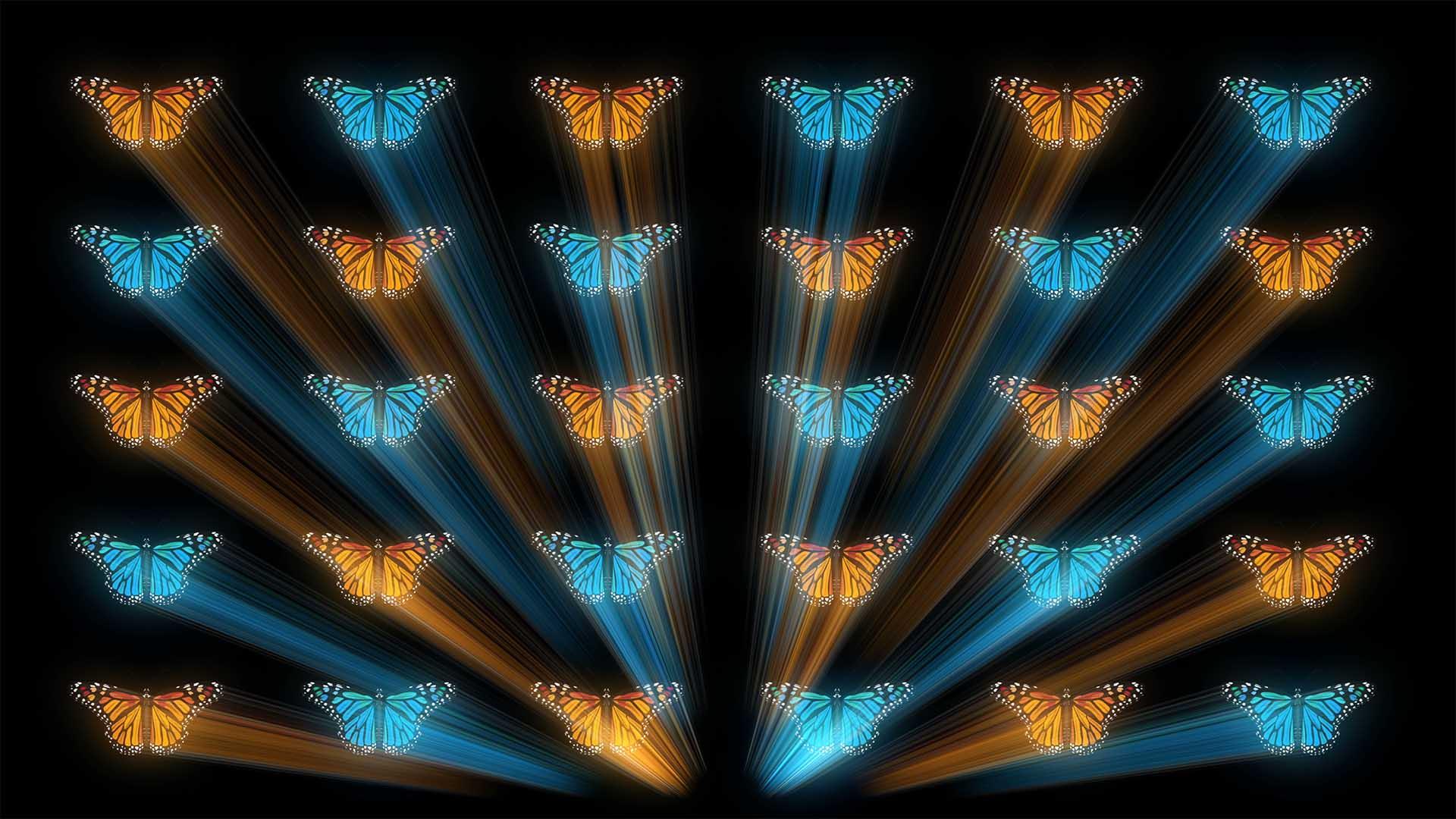 Butterfly Effect 4K