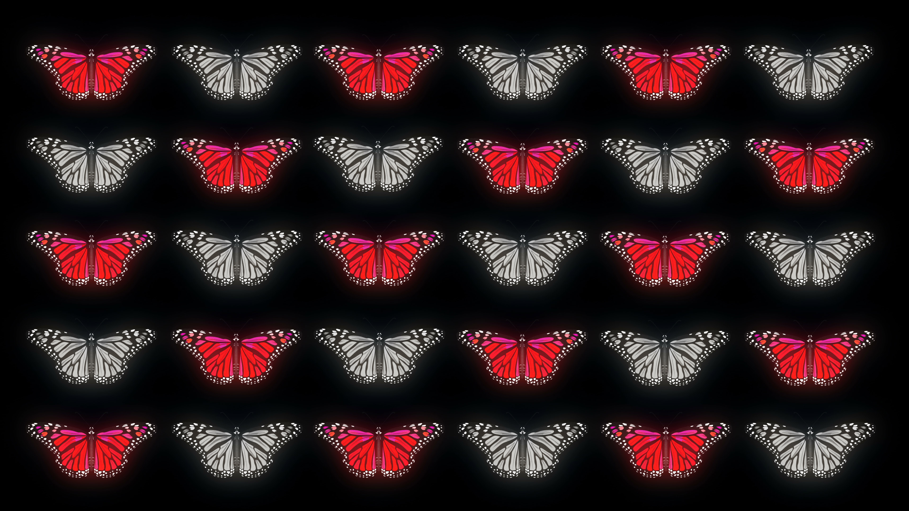 VJ Loops Pack 4K Butterfly Effect Collection