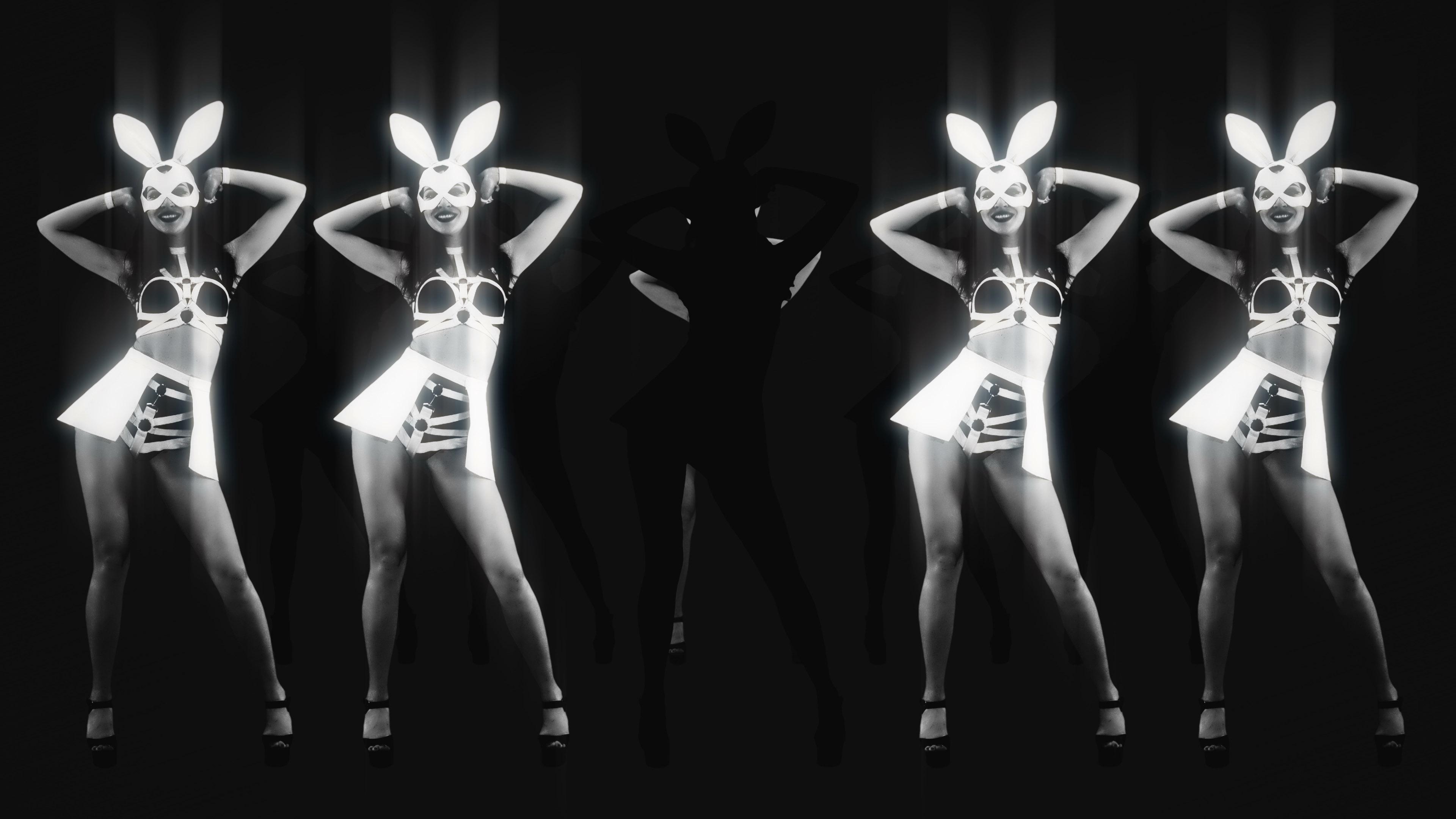 playboy girls bunny rabbit