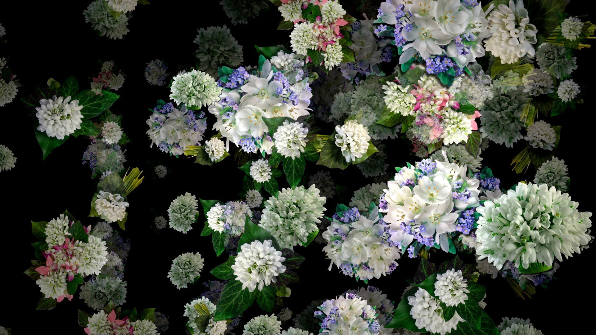 72_VJ_Loops_Pack_72_-_Flower_Rain