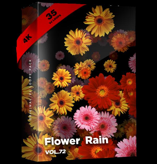VJ Loops Pack Vol.72 Flower Rain