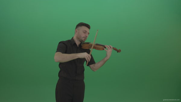 Green-Screen-People-Man-playing-violin-fiddle-strings-music-instument-in-slow-romantic-style-isolated-green-screen_005