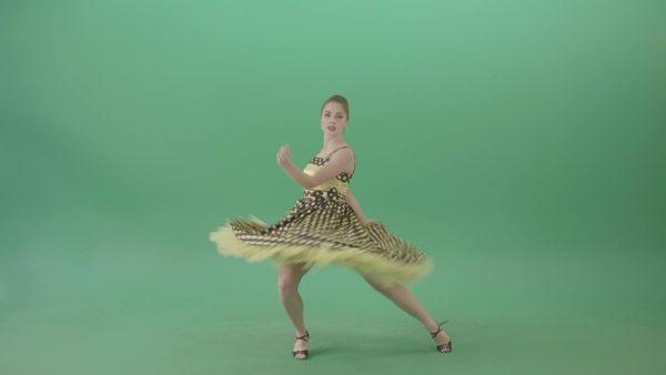 green screen video footage